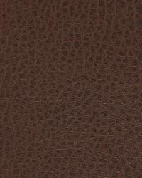 Robert Allen Arthur Molasses Fabric