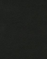 Melvin Evergreen by  Robert Allen
