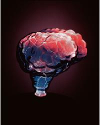 Mini Brain Electra Lamp Red by