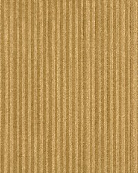 1137 Gold Stripe by