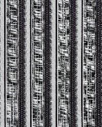 1366 Onyx Stripe by