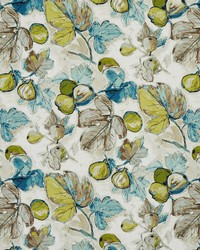 Fruit Fabric  20310-01