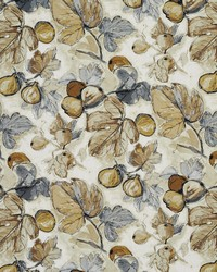 Fruit Fabric  20310-02