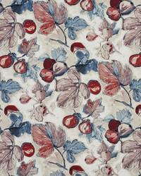Fruit Fabric  20310-04