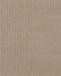 2833 Beige/Tan/Taupe by