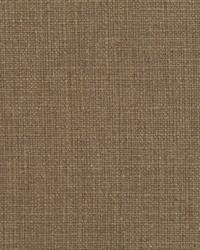 Brown Natural Textures Fabric  31000-02