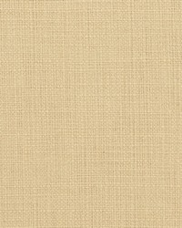 Beige Natural Textures Fabric  31000-03