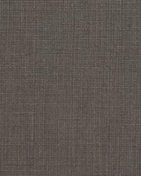 Gray Natural Textures Fabric  31000-06