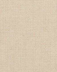 Beige Natural Textures Fabric  31000-08