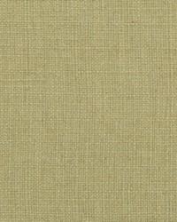Green Natural Textures Fabric  31000-09