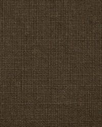 Brown Natural Textures Fabric  31000-10