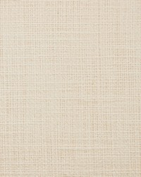 White Natural Textures Fabric  31000-11