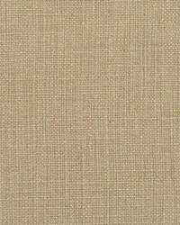 Beige Natural Textures Fabric  31000-13