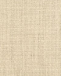 White Natural Textures Fabric  31000-15