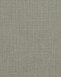 Gray Natural Textures Fabric  31000-16