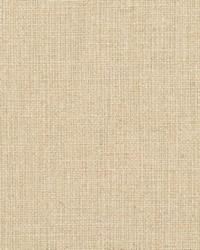 Beige Natural Textures Fabric  31000-17