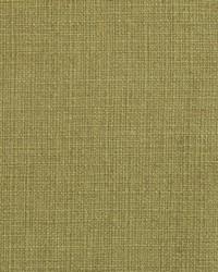 Green Natural Textures Fabric  31000-19