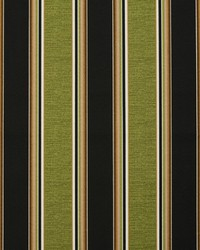 4627 Woodland Stripe by