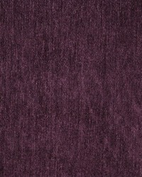 Charlotte Fabrics 4790 Grape Fabric