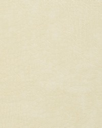8268 Ivory by