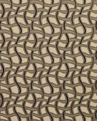8544 Nutmeg/Maze by
