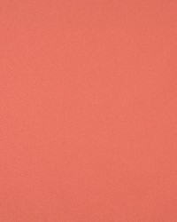 9461 Coral by