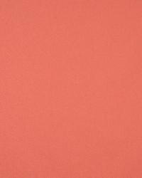 Solid Color Denim Fabric  9461 Coral