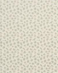 White Shades Of Teal Fabric Charlotte Fabrics CB700-195