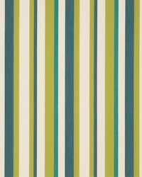 D1012 Meadow Stripe by