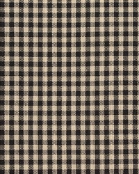 D117 Onyx Gingham by