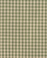 D119 Juniper Gingham by