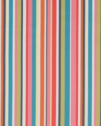 D1425 Festival Stripe by