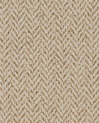 D1628 Flax by
