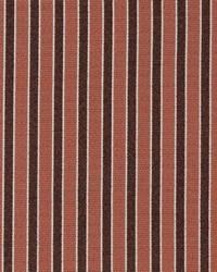 D2131 Salmon Stripe by