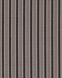 D2135 Pewter Stripe by