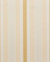 D300 Antique Noble Stripe by