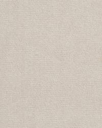 D406 Parchment by