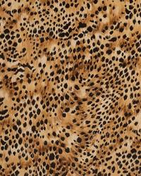 D409 Leopard by