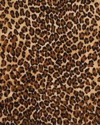 D411 Jaguar by