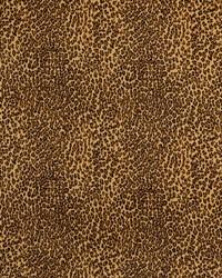 D415 Cheetah by