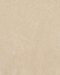 Charlotte Fabrics D568 Bisque Mosaic Fabric