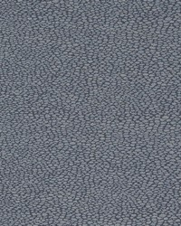 D897 Pebble/Navy by