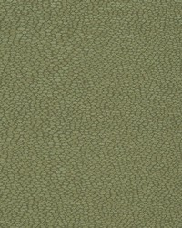 D898 Pebble/Sage by