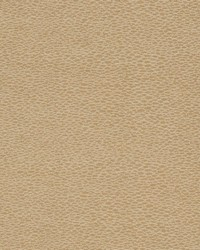 D902 Pebble/Taupe by