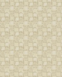Charlotte Fabrics D923 Squares/Canvas Fabric