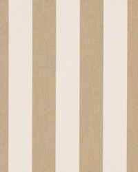 D984 Dune Stripe by