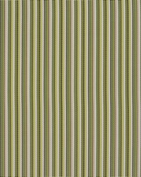 Green Outdoor Sling Fabric Charlotte Fabrics S104 Kiwi