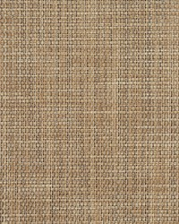 Brown Outdoor Sling Fabric Charlotte Fabrics S111 Sand