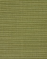Green Outdoor Sling Fabric Charlotte Fabrics S134 Spring