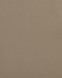 V109 Sandstone by